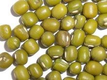 Green Mung Bean (Prime quality dried)