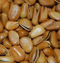 Pine nuts For Sale