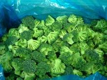 IQF Broccoli For Sale