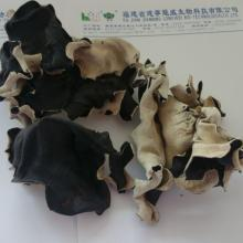 Dried Black Fungus,Jelly ear,jew's ear,wood ear mushroom