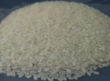 Chinese short round rice,japonica round rice,susi rice