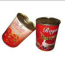 Can ned  Tomato  Paste, Brix 18-20% in 800g Size