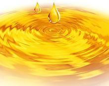 CRUDE DEGUMMED RAPE SEED OIL