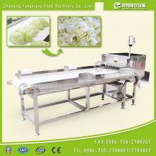 Hobbing Type Vegetable Cutting Machine