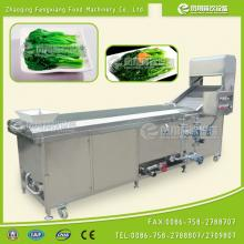 PT-2000 Blanching Machine