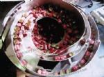 bowl feeder for bottle caps