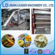 Commercial food process machinery for drying fruit and vegetable