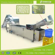 Cabbage Dicing &Washing Production Line