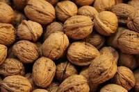 Almond Nuts /Pistachio Nuts/Cashew Nuts/Peanut/Pecan Nuts