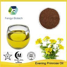 Food Supplement Material-100% Pure Evening Primrose Oil