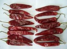 Red chili dried chili distributors, Red hot chili peppers