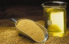 Crude and Refined Soybean Oil