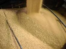 Copy of Quality Soybean Meal for sale