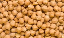 Chickpeas for sale 2015