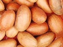 Garcinia Kola Nut