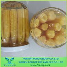 Canned Baby Corn Cut in Brine
