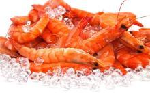Fresh Deep Sea food Frozen Red Shirmp