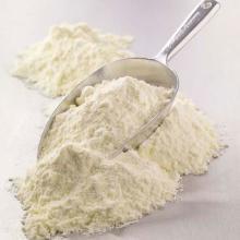 powder milk, powder jelly, powder whipped cream, powder gelatine