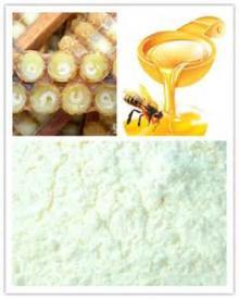 high grade royal jelly powder bee royal jelly powd