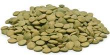 Green lentils beans