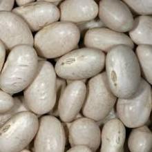 White Kidney Bean/ Scarlet runner bean /Multiflora bean Extract 10:1