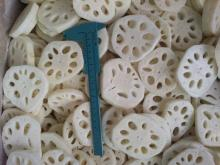 IQF Lotus Root Slice, Frozen Lotus Root