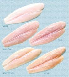 Frozen pangasius well -trimmed