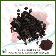 Chinese Magnoliavine Fruit P.E.,Fructus Schisandrae Chinensis Extract Schisandrin A 1%