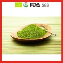 USDA & EU Organic Ceremony Matcha Tea Powder Private Label