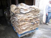 Wet Salted Cow Hides,wet salted ox/heifer hides,wet salted kip skins for sale