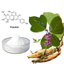 kudzu root extract Puerarin 30%