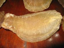 Dried fish maws