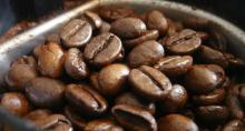 Roasted Highly Aromatic Indian Arabica Coffee Beans