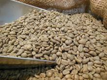 Natural Organic Unroasted Coffee Bean