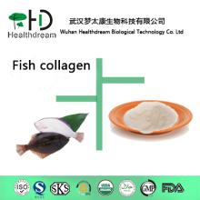 Supply 100% pure Fish Collagen