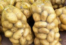 2015 High quality Fresh Potato