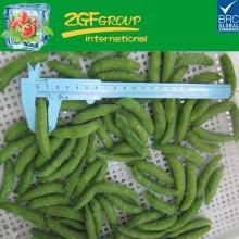 organic fresh raw material sugar snap pea manufacturer