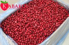 Good quality IQF RED CURRANT iqf/frozen lingonberry, red and delicious berry redcurrent