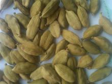 Green Raw CARDAMOM SEED for sales