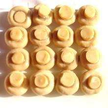 Fatory Price Premium  Canned   Button   Mushroom  Whole in Brine