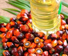RBD REFINED PALM OIL.
