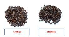 ROASTED COFFEE BEAN - AN THAI CAFE