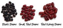 adzuki beans, chori beans, rajma beans, red beans