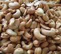 First Grade Raw and Roasted Cashew Nuts