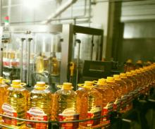 100% Refined sunflower oil for cheap price