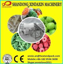 IQF fruit vegetables fluidized tunnel freezer