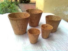 Coconut fiber pot.
