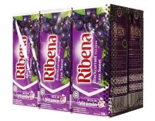 Ribena Fruit Juice