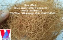 Vietnam Coconut Fibre/ Coconut Fiber