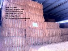 Coconut Fiber From Vietnam_0084 975584679